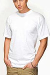 stedman basic tees